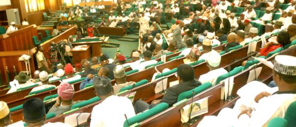 Nigeria House of Representative. NS