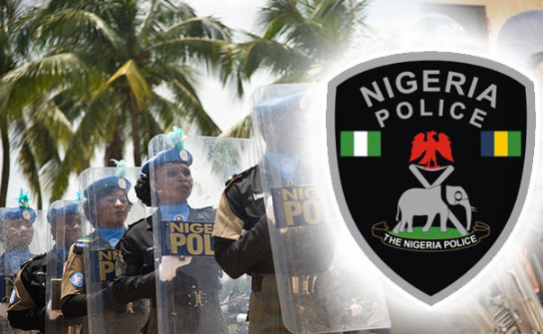 Nigeria police e1455800901414 - Human Rights: IGP urges Police to do more,